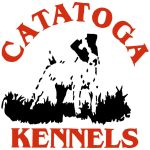 Catatoga Logo