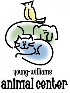 YWAC logo hi res